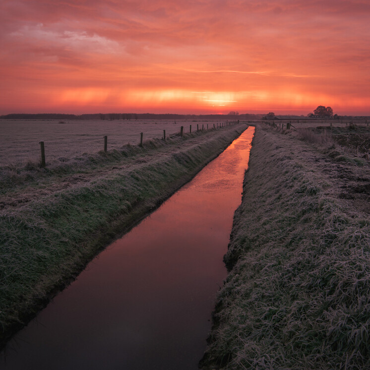 Foto Pinky morning mate van Nick boerkamp